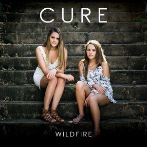 Wild Fire Cure